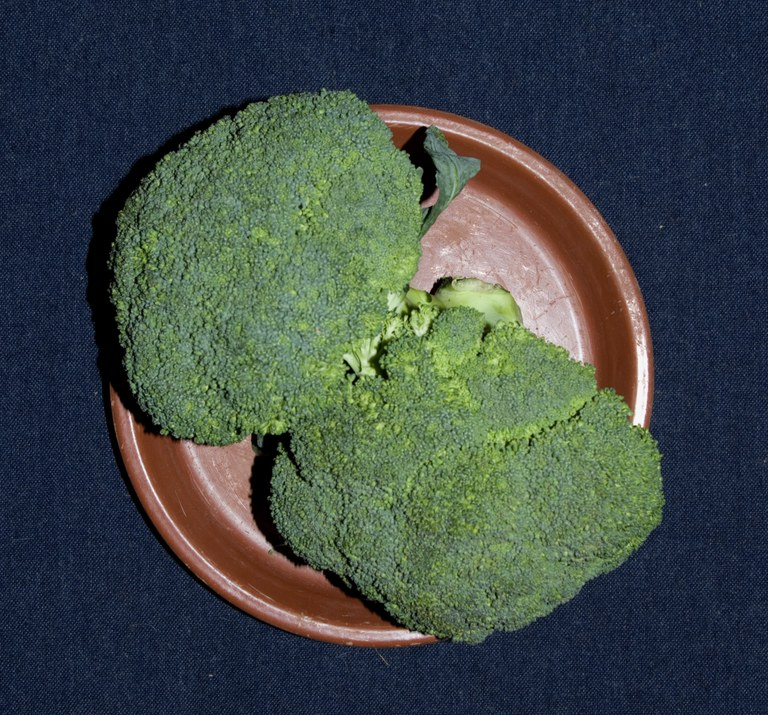 2 Broccoli florets